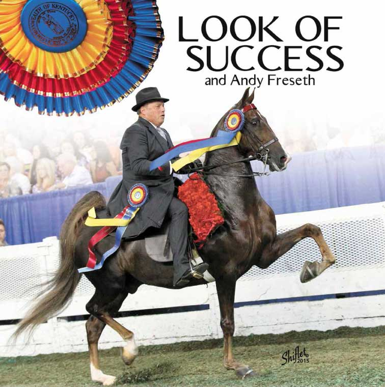 WCC Look of Success - SOLD